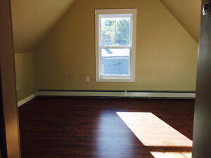 DELUXE STUDIO/BACHELOR LOFT APARTMENT GREAT LOCATION IN CH'TOWN