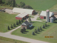Keady Area Farm for Sale - By Owner