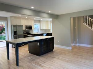 Renovated Executive Family Home w/ Garage and Yard! Nov 1st