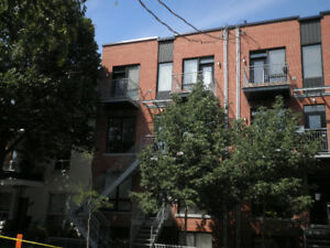 GRAND 4 1/2 Plateau Mont-Royal  5 électros inclus