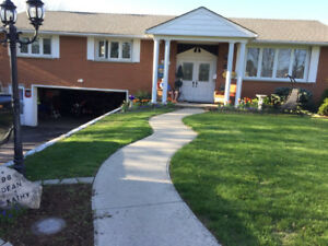 House for sale in courtland ont