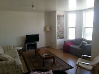 Looking for Roommate in 3 Bedroom Apartment