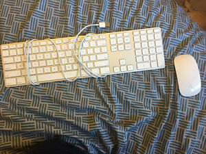 Wireless Apple Mouse and Wired Keyboard