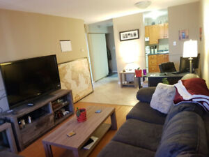 1 BR Apartment, Downtown, $1125