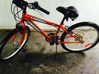 Super Cycle Girls Bike