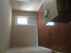 ALL INCLUSIVE NEWLY RENO TWO BEDROOMS
