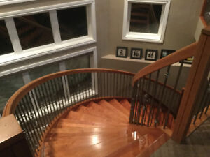 Room for rent lake front walk out basement