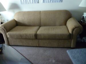 GLD CHENILLE SOFA BED