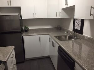 Trenton Apartments for rent with Full Renovations!