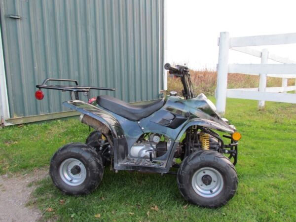 Used 2010 Taotao atv