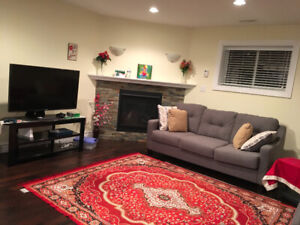 Luxurious basement for rent of raised ranch house