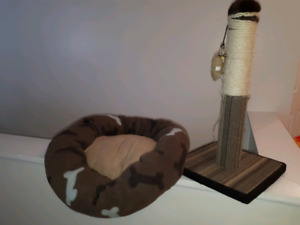 Cat's scratching post and bed.