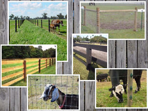 Need help with Fencing? Looking for a Ring/Barn/Arena?
