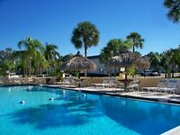 Clearwater Florida Condo for Rent