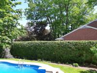 Ontario Hedge Trimming