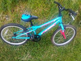 Girls bike 20inch wheels