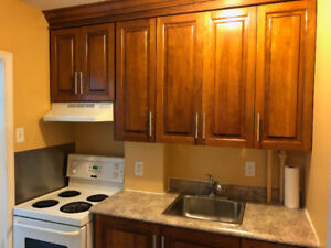 Great 1 Bedroom Apt  Downtown -  Heat included!