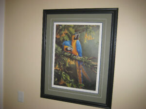 Blue and Gold Macaw SIGNED Print