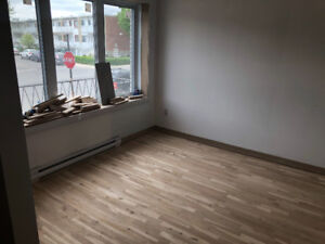 GRAND 4.5 À LOUER / BIG 4.5 TO RENT - RENOVATIONS NEW LASALLE