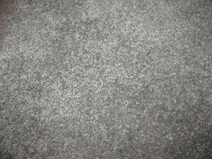 Carpet - new