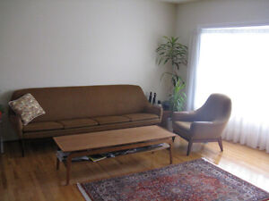 Retro Scandinavian sofa and chair with solid teak base & accents