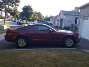 Ford Mustang Automatic - Pickering - Toronto