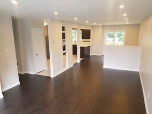 Newly Renovated, 5 bedroom huge home
