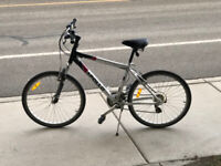 Hybrid Bicycle for Sale + get Helmet and Lock for free