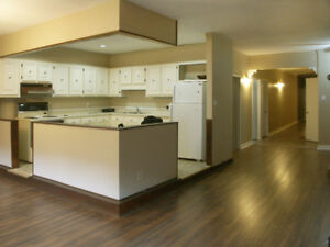 Large 3 Bdrm, 2bthrm Apratment on Trendy James St N