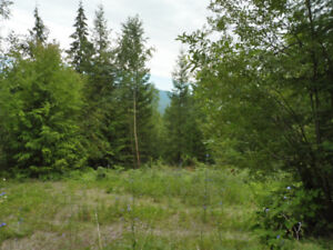 Here is your chance to own a beautiful lot in North Shuswap!