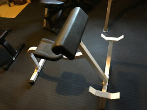 Northern Light Arm Curl Bench