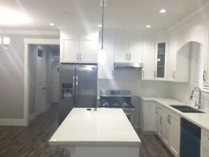 2 Year Old House for Rent in Albion/5 Bedrooms and 3.5 Bathrooms