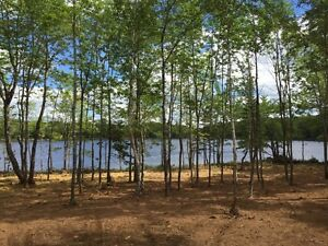 Annual Lake Lots for Lease