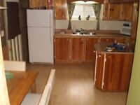 large one bedroom basement apartment for rent