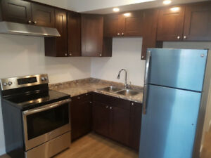 2 bedrooms furnished walkout, daily, weekly, monthly
