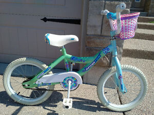 "Girls 16"" Bike in Excellent Condition"