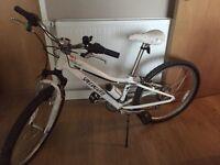 Girls Specialised Hotrock Bike.