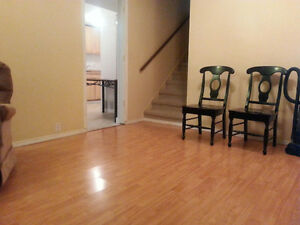 two bedroom legal basment suite close to west edmonton mall