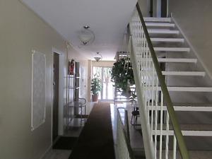 AVAILABLE MARCH 1ST - LARGE THREE BEDROOM UNIT