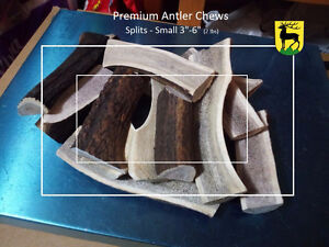 #1 Grade Antler dog chews Kitchener / Waterloo Kitchener Area image 6