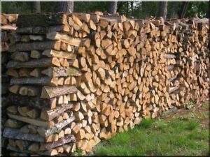 Seasoned firewood ! Order now before the price is go up!!