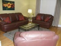 Furnished Downtown Condo
