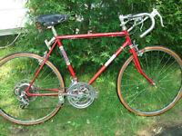 Vélo de route Rona pour jeune personne