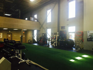 Personal training in a private gym Cambridge Kitchener Area image 3
