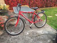 Mens 22inch bike