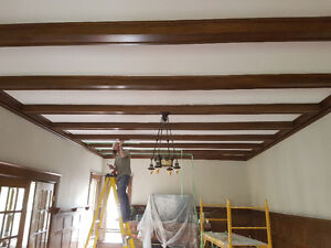 drywall and new ceilings and damaged ceiling repairs Kitchener / Waterloo Kitchener Area image 10