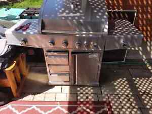 Stainless Steel BBQ - Cast Iron Grill