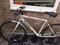Envoy Hybrid Bike for sale - £70 ono - Great first bike
