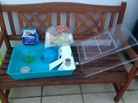 Hamster cage no mess plastic sides plus small fingers safe