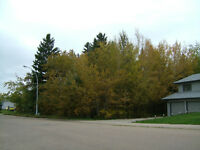 MatureTrees, Residential Lots